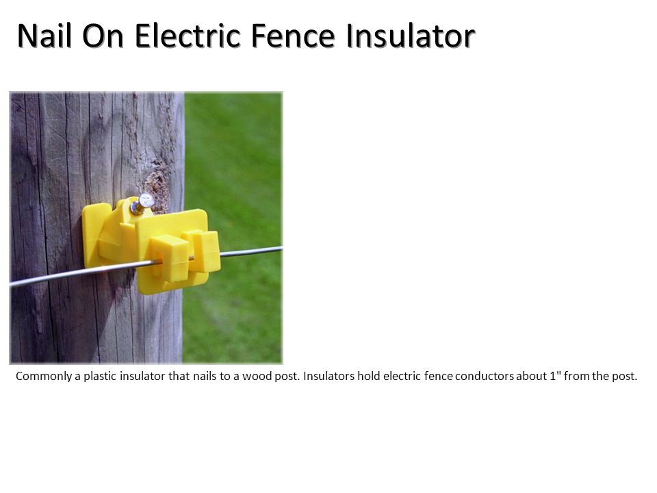 Nail On Electric Fence Insulator Commonly a plastic insulator that nails to a wood post.