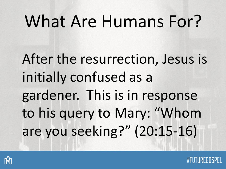 What Are Humans For. After the resurrection, Jesus is initially confused as a gardener.