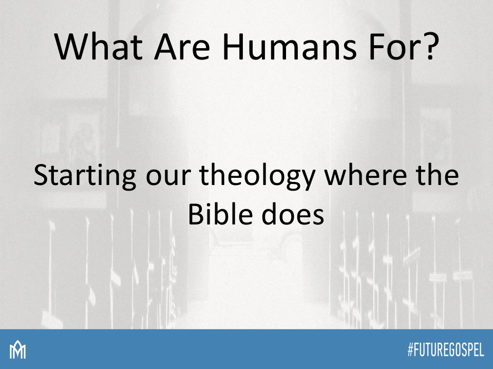 What Are Humans For Starting our theology where the Bible does