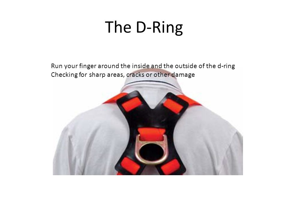 The D-Ring Run your finger around the inside and the outside of the d-ring Checking for sharp areas, cracks or other damage