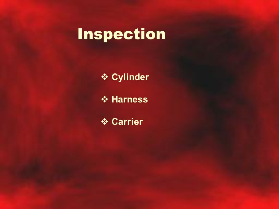 Inspection  Cylinder  Harness  Carrier