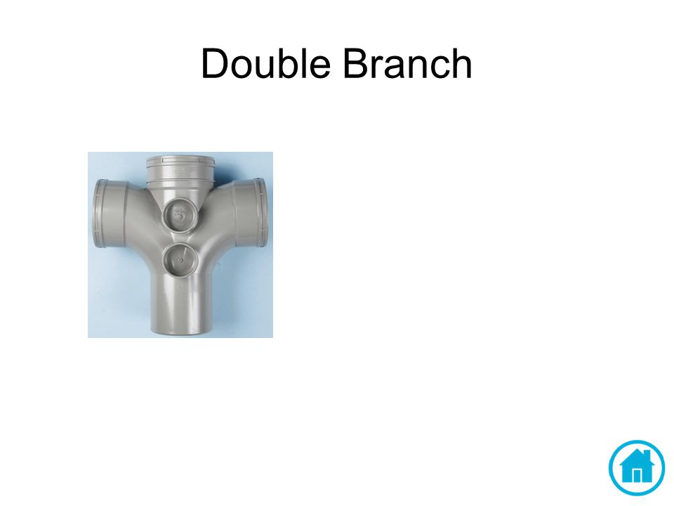 Double Branch