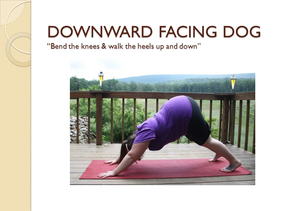 DOWNWARD FACING DOG Bend the knees & walk the heels up and down