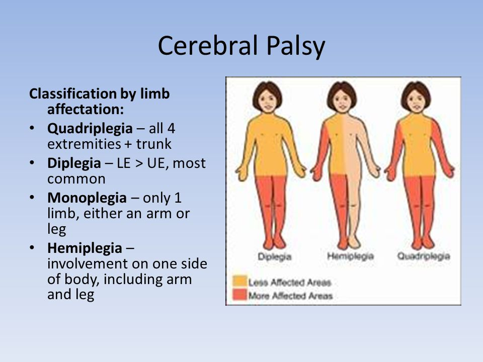 Cerebral Palsy Classification by limb affectation: Quadriplegia – all 4 extremities + trunk Diplegia – LE > UE, most common Monoplegia – only 1 limb, either an arm or leg Hemiplegia – involvement on one side of body, including arm and leg
