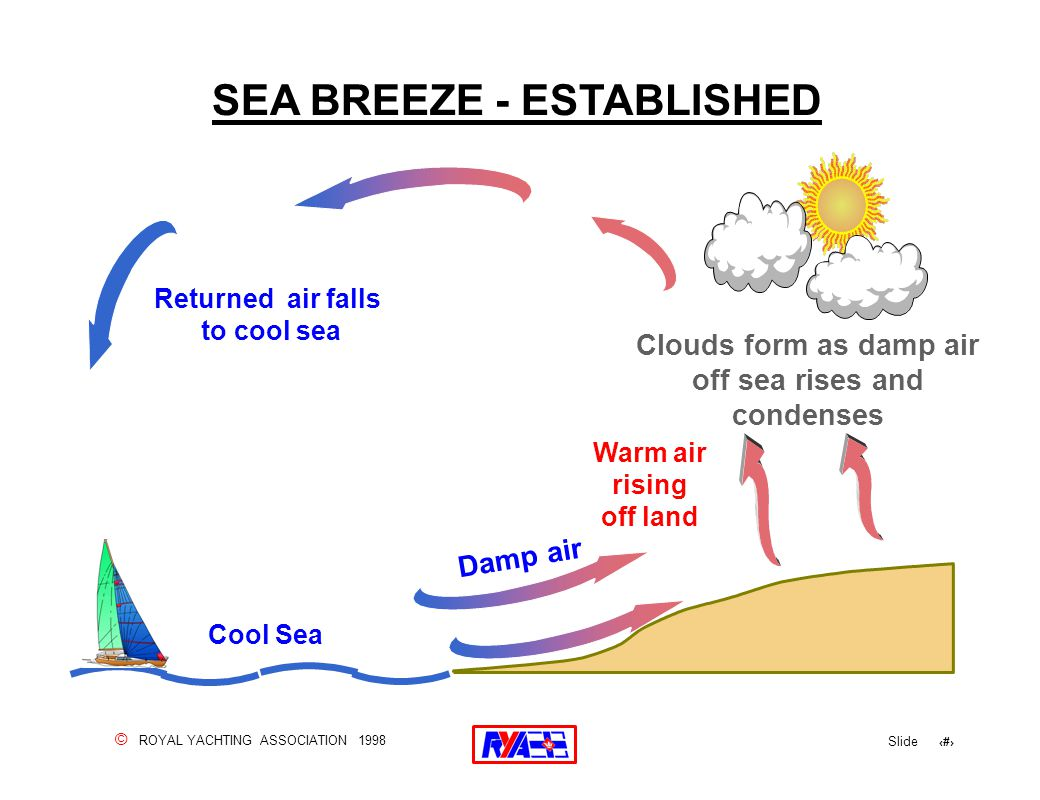 © ROYAL YACHTING ASSOCIATION 1998 Slide 113 SEA BREEZE - ESTABLISHED Returned air falls to cool sea Warm air rising off land Cool Sea Clouds form as damp air off sea rises and condenses Damp air