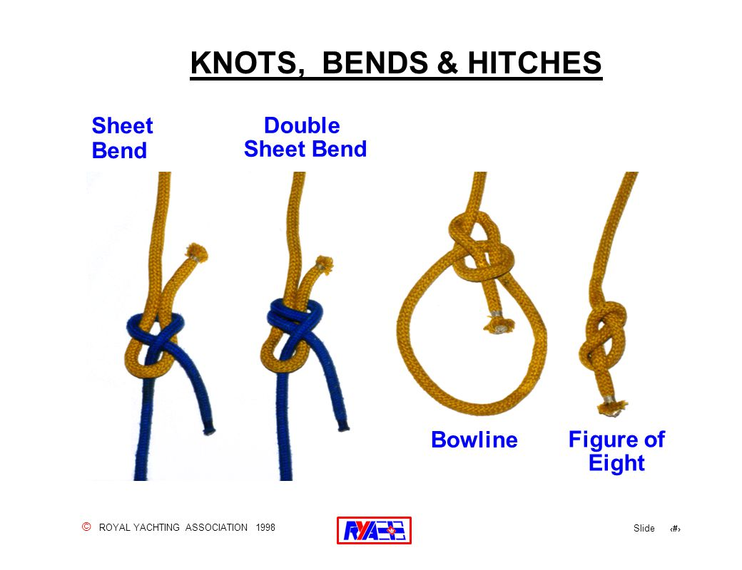 © ROYAL YACHTING ASSOCIATION 1998 Slide 13 Sheet Bend Double Sheet Bend Bowline Figure of Eight KNOTS, BENDS & HITCHES