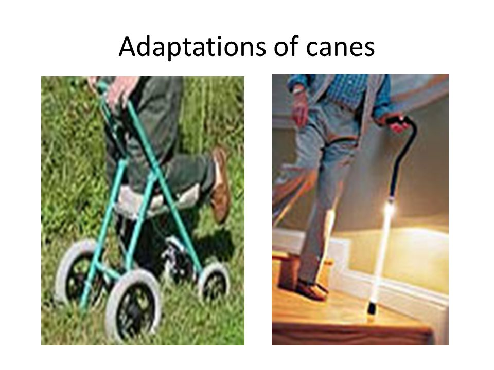 Adaptations of canes