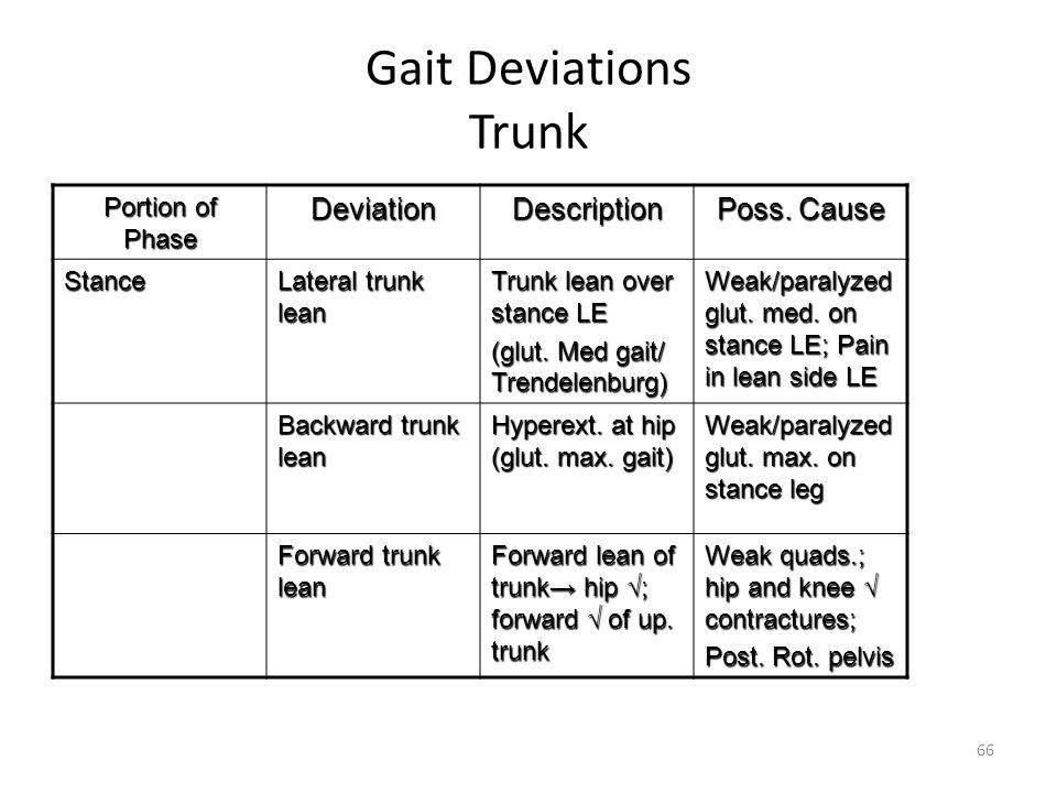 Gait Deviations Trunk Portion of Phase DeviationDescription Poss. Cause Stance Lateral trunk lean Trunk lean over stance LE (glut. Med gait/ Trendelen