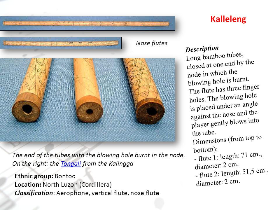 Nose flutes Kalleleng The end of the tubes with the blowing hole burnt in the node.