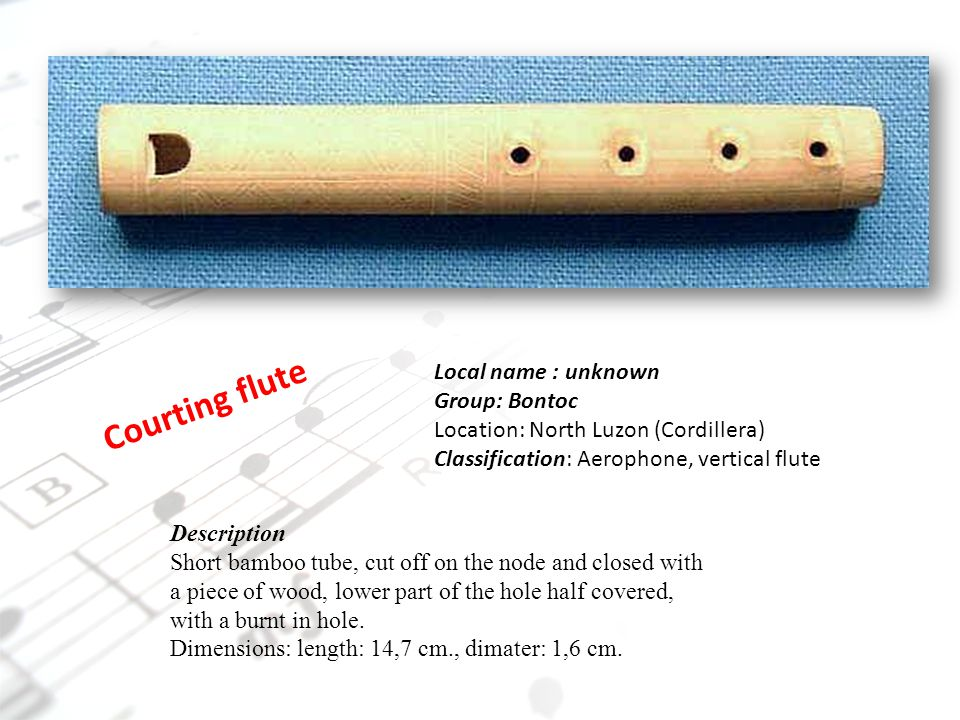 Courting flute Local name : unknown Group: Bontoc Location: North Luzon (Cordillera) Classification: Aerophone, vertical flute Description Short bambo