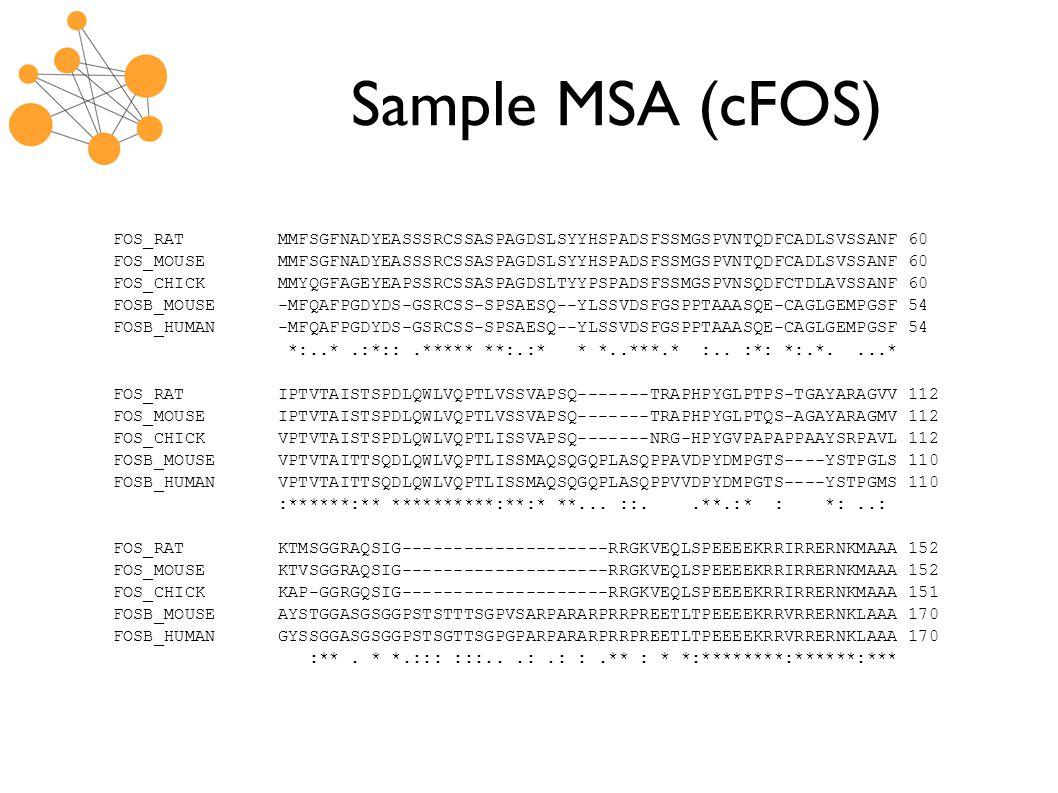 Sample MSA (cFOS) FOS_RAT MMFSGFNADYEASSSRCSSASPAGDSLSYYHSPADSFSSMGSPVNTQDFCADLSVSSANF 60 FOS_MOUSE MMFSGFNADYEASSSRCSSASPAGDSLSYYHSPADSFSSMGSPVNTQDFCADLSVSSANF 60 FOS_CHICK MMYQGFAGEYEAPSSRCSSASPAGDSLTYYPSPADSFSSMGSPVNSQDFCTDLAVSSANF 60 FOSB_MOUSE -MFQAFPGDYDS-GSRCSS-SPSAESQ--YLSSVDSFGSPPTAAASQE-CAGLGEMPGSF 54 FOSB_HUMAN -MFQAFPGDYDS-GSRCSS-SPSAESQ--YLSSVDSFGSPPTAAASQE-CAGLGEMPGSF 54 *:..*.:*::.***** **:.:* * *..***.* :..