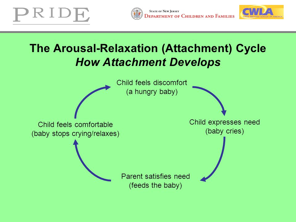 The Arousal-Relaxation (Attachment) Cycle How Attachment Develops Child feels discomfort (a hungry baby) Child expresses need (baby cries) Parent satisfies need (feeds the baby) Child feels comfortable (baby stops crying/relaxes)