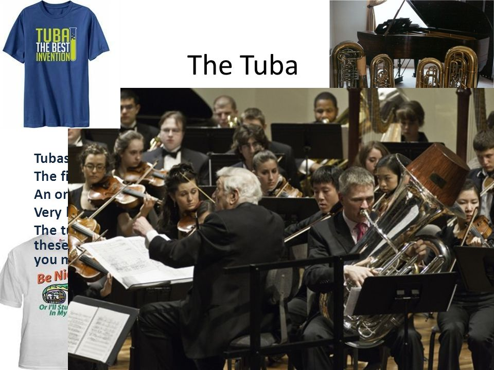 The Tuba Fun Fact Tubas are the largest and lowest of the brass instruments.