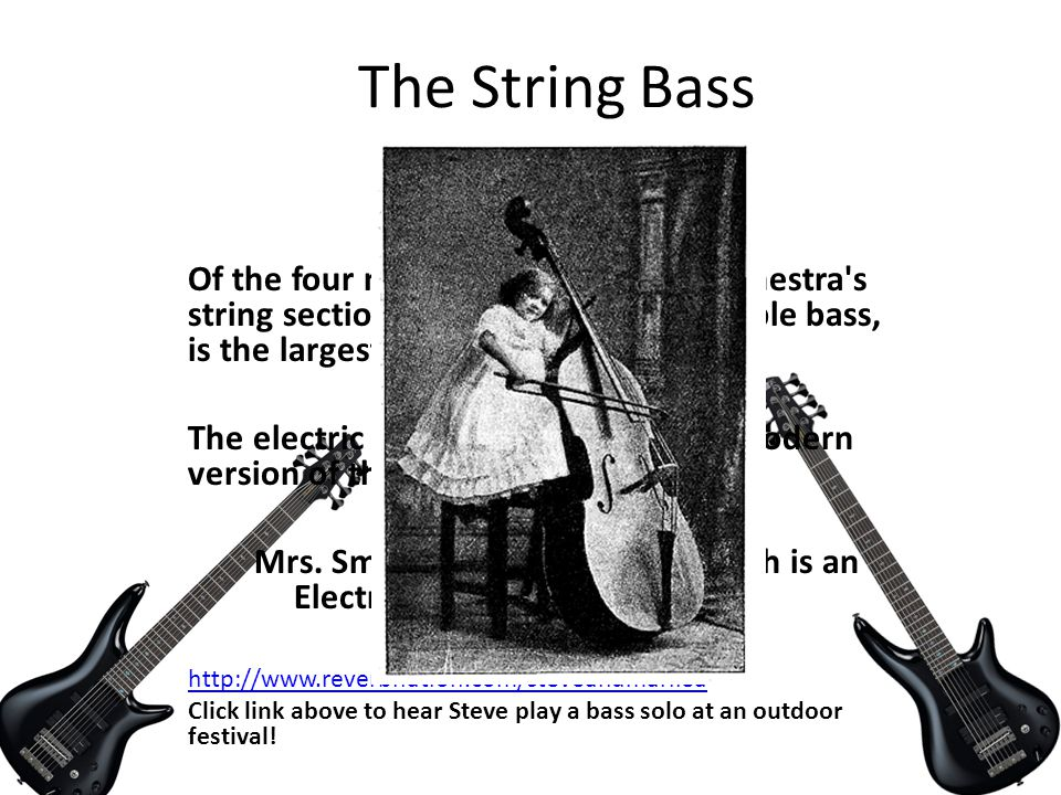 The String Bass FUN FACTS ! Of the four main members of the orchestra's string section, the string bass, or double bass, is the largest and deepest in