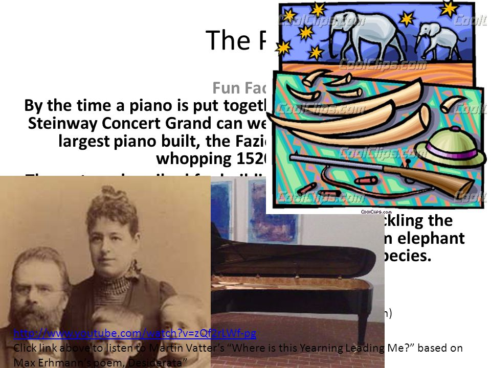 The Piano Fun Facts By the time a piano is put together it can be quite heavy. A Steinway Concert Grand can weigh up to 990 pounds. The largest piano