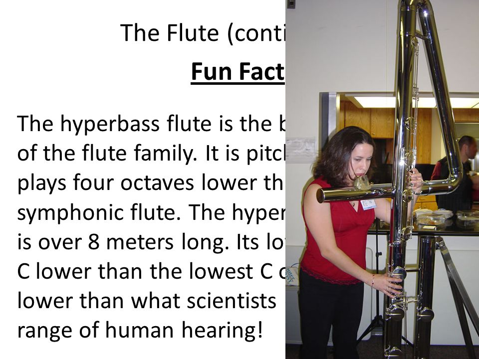 The Flute (continued) Fun Fact The hyperbass flute is the biggest member of the flute family. It is pitched in C, and plays four octaves lower than th