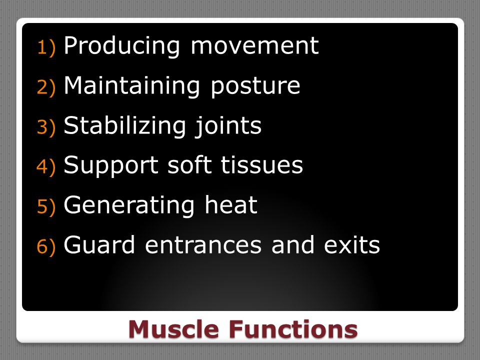 Muscle Functions 1) Producing movement 2) Maintaining posture 3) Stabilizing joints 4) Support soft tissues 5) Generating heat 6) Guard entrances and