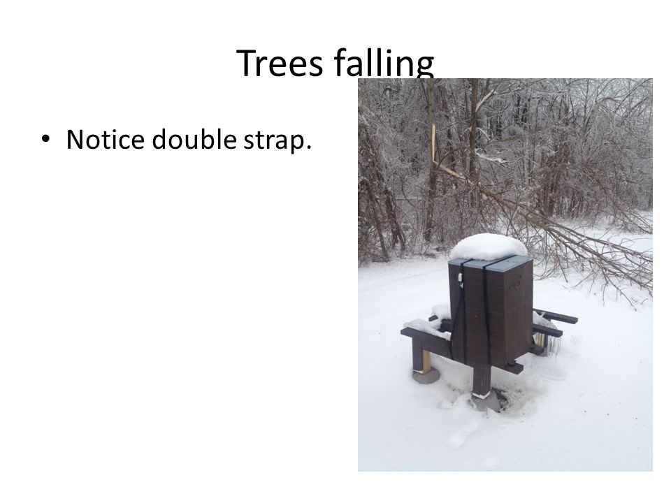 Trees falling Notice double strap.