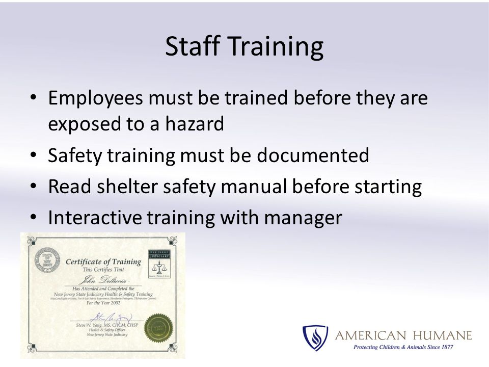 Employees must be trained before they are exposed to a hazard Safety training must be documented Read shelter safety manual before starting Interactive training with manager