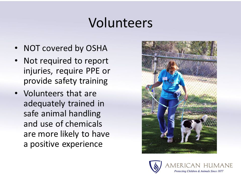 Volunteers NOT covered by OSHA Not required to report injuries, require PPE or provide safety training Volunteers that are adequately trained in safe animal handling and use of chemicals are more likely to have a positive experience