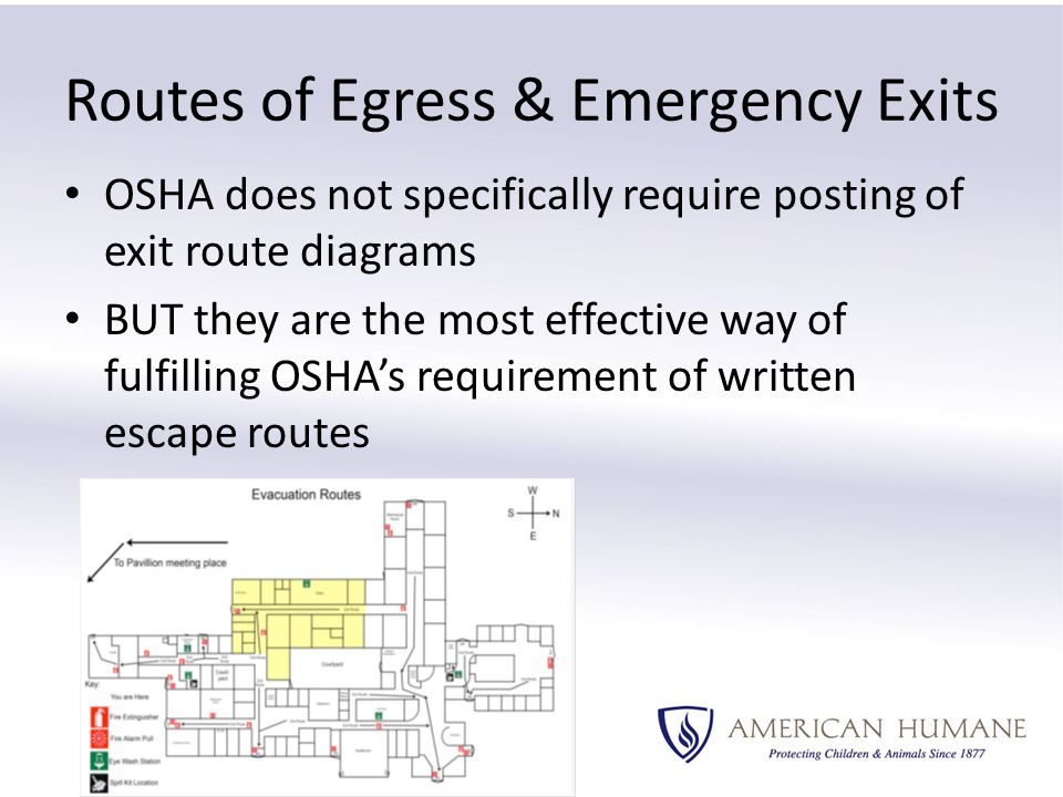 Routes of Egress & Emergency Exits OSHA does not specifically require posting of exit route diagrams BUT they are the most effective way of fulfilling OSHA's requirement of written escape routes
