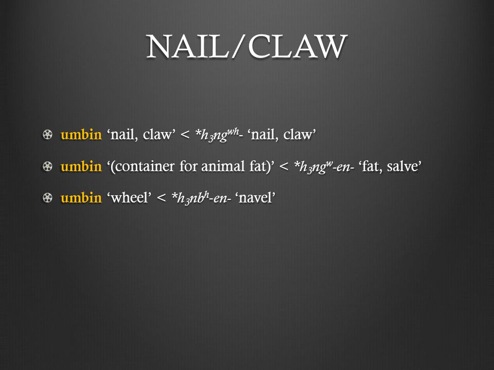 NAIL/CLAW umbin 'nail, claw' < *h 3 ng wh - 'nail, claw' umbin '(container for animal fat)' < *h 3 ng w -en- 'fat, salve' umbin 'wheel' < *h 3 nb h - en- 'navel'