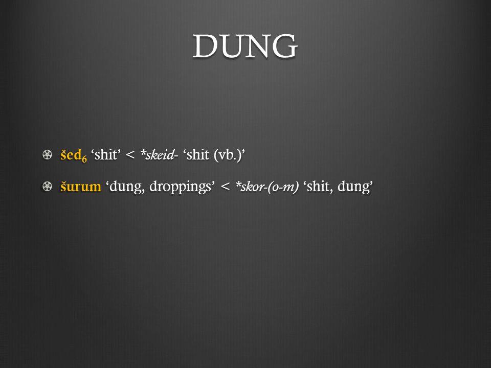 DUNG šed 6 'shit' < *skeid - 'shit (vb.)' šurum 'dung, droppings' < *skor-(o-m) 'shit, dung'
