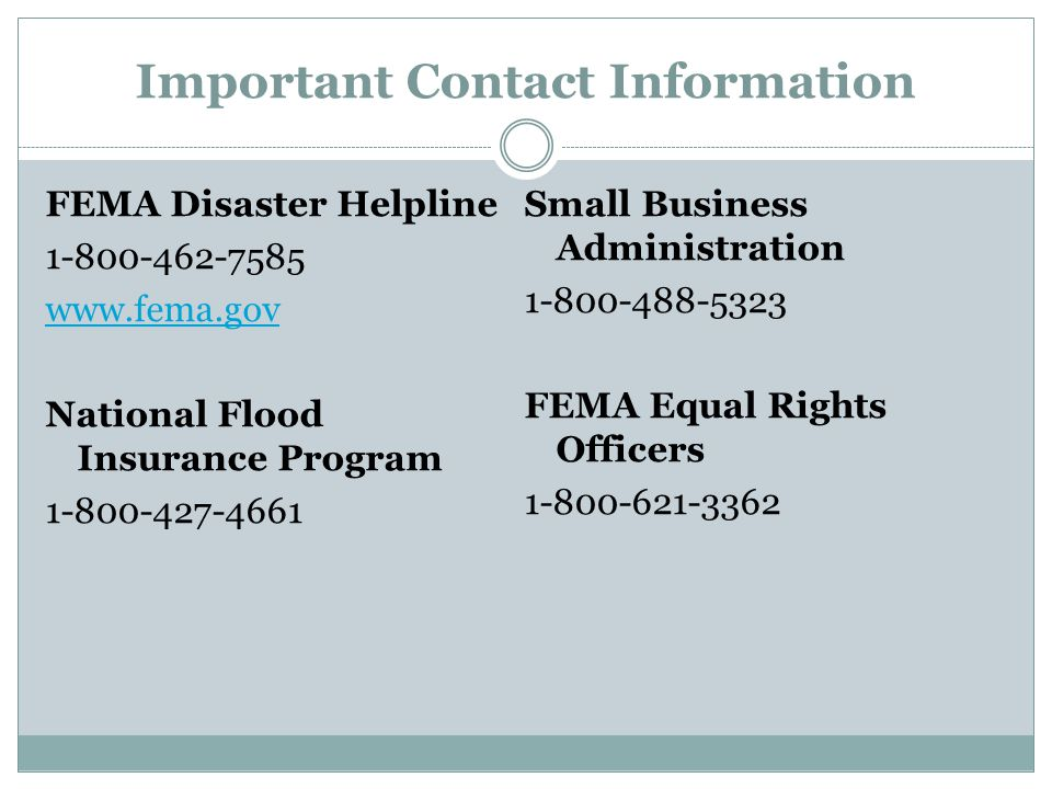 Important Contact Information FEMA Disaster Helpline 1-800-462-7585 www.fema.gov National Flood Insurance Program 1-800-427-4661 Small Business Administration 1-800-488-5323 FEMA Equal Rights Officers 1-800-621-3362