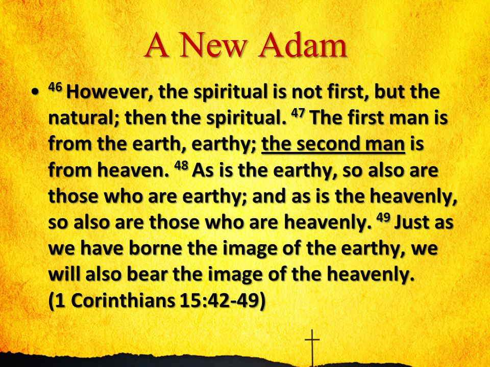 A New Adam 46 However, the spiritual is not first, but the natural; then the spiritual. 47 The first man is from the earth, earthy; the second man is