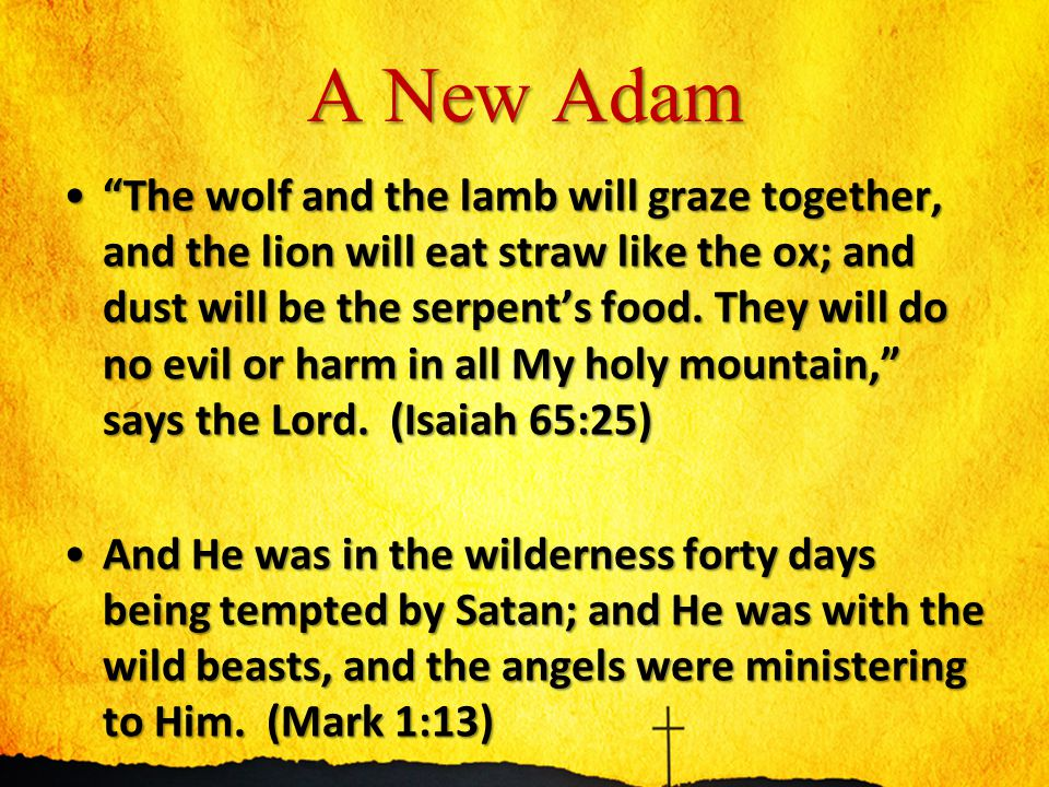 A New Israel 12 Immediately the Spirit impelled Him to go out into the wilderness.