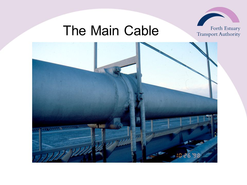 The Main Cable