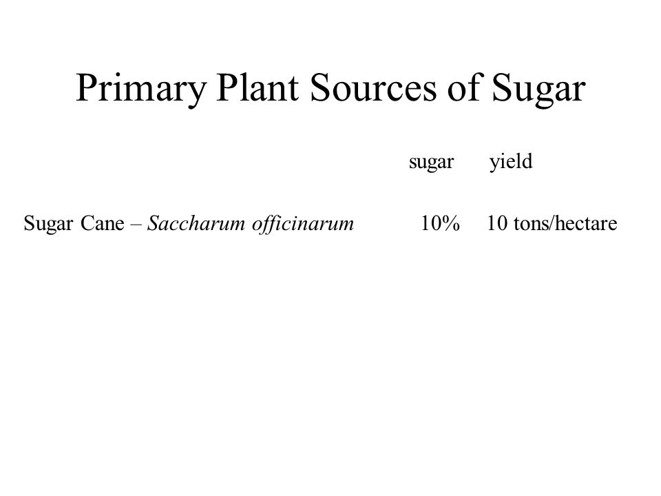 Primary Plant Sources of Sugar Sugar Cane – Saccharum officinarum10%10 tons/hectare sugar yield