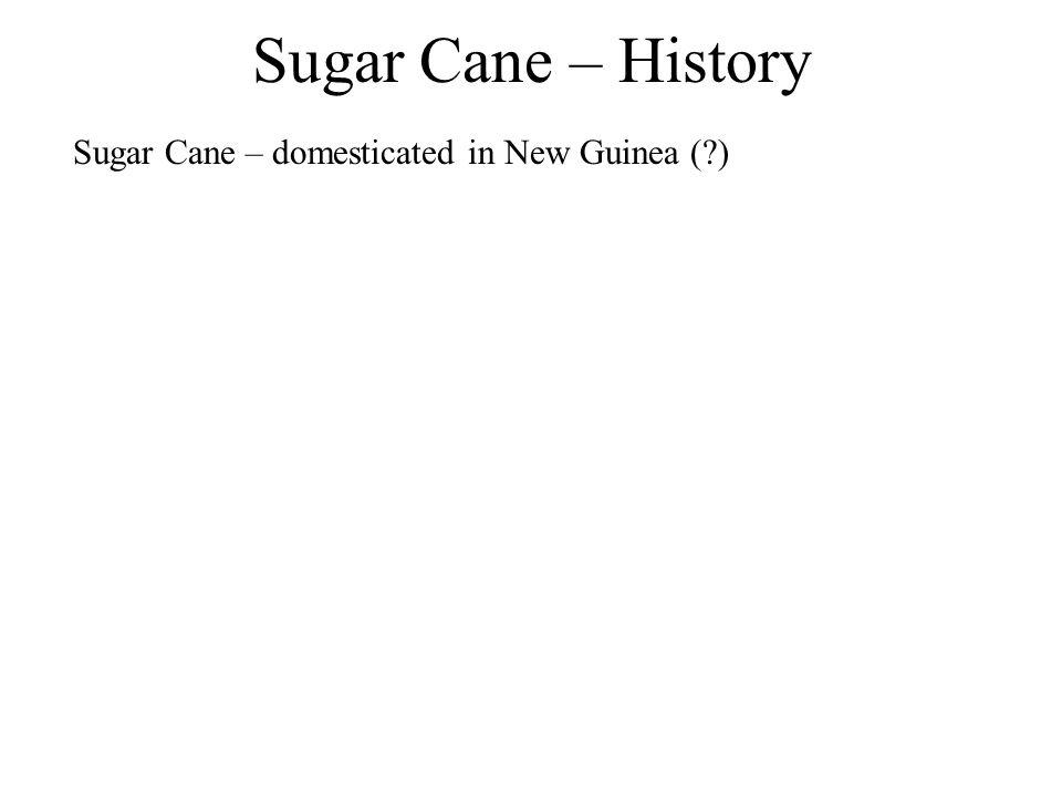 Sugar Cane – History Sugar Cane – domesticated in New Guinea ( )