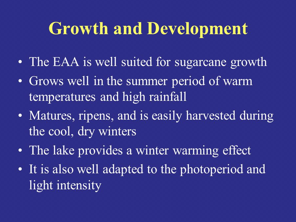 Temperature Requirements Grows slowly at temperatures above 70 F Ambient temperature above 80 F are ideal Prolonged temperatures above 90 F and water stress can slow growth Very sensitive to cold, few buds will survive temperatures below 27 F