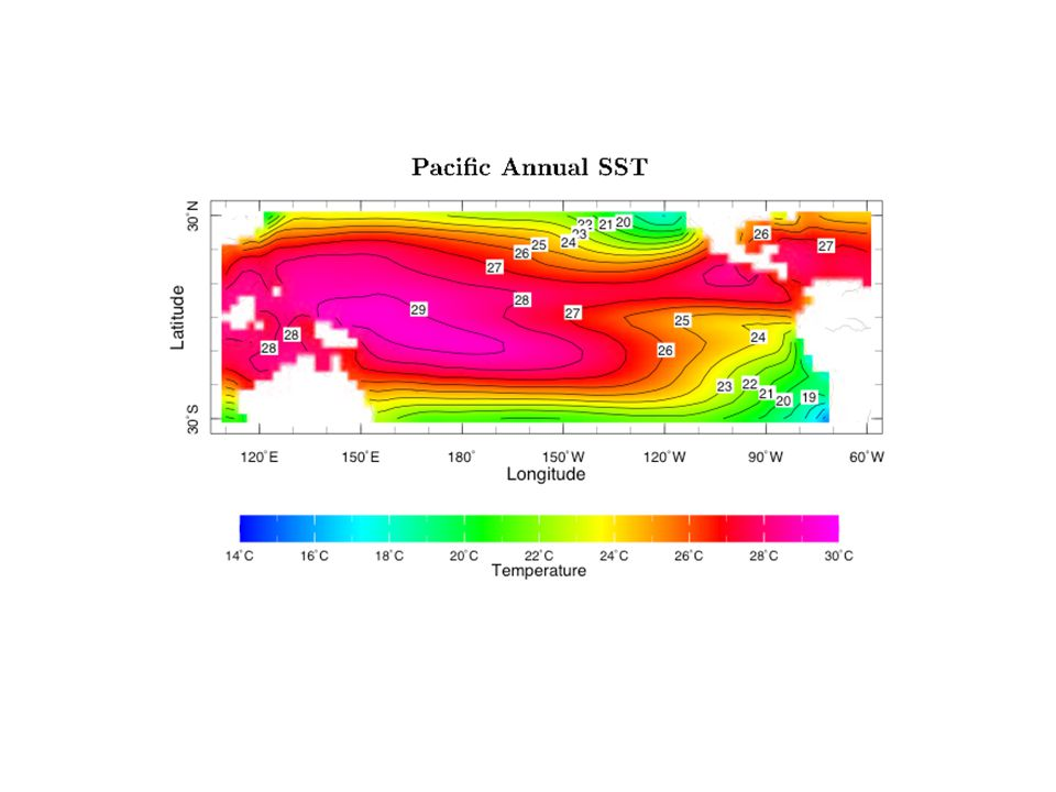 Pacific Annual SST