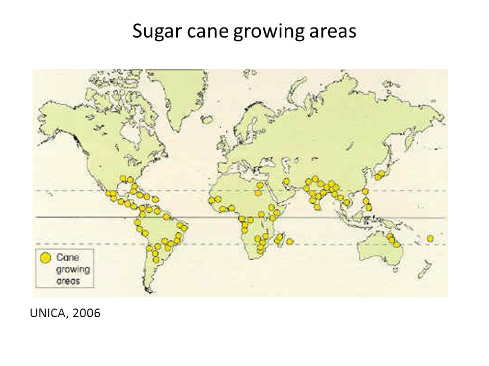 Sugar cane growing areas UNICA, 2006