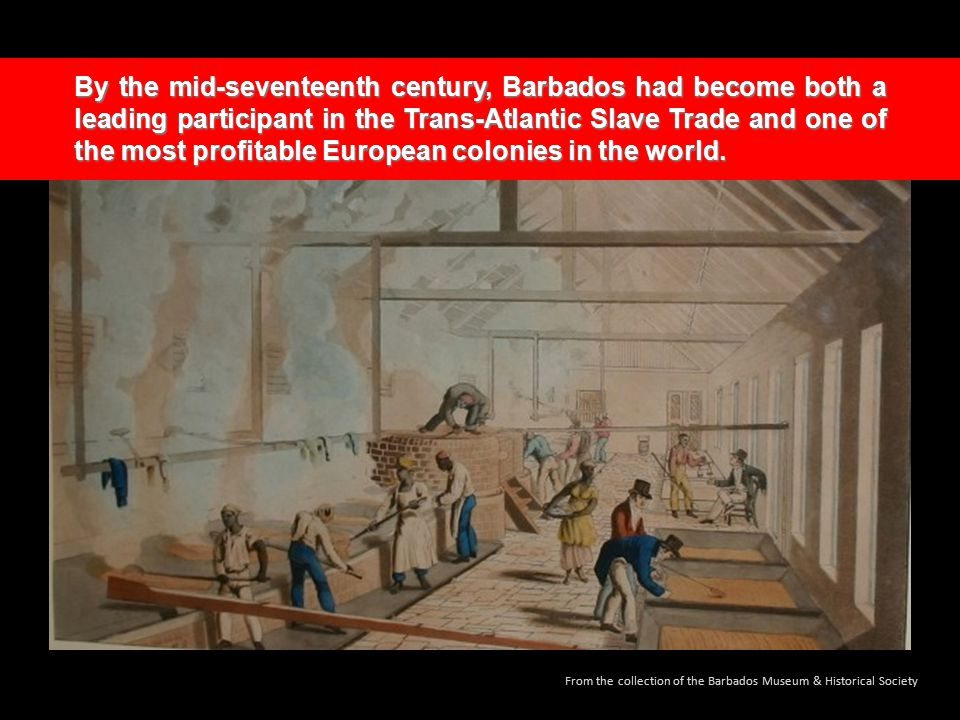 By the mid-seventeenth century, Barbados had become both a leading participant in the Trans-Atlantic Slave Trade and one of the most profitable European colonies in the world.