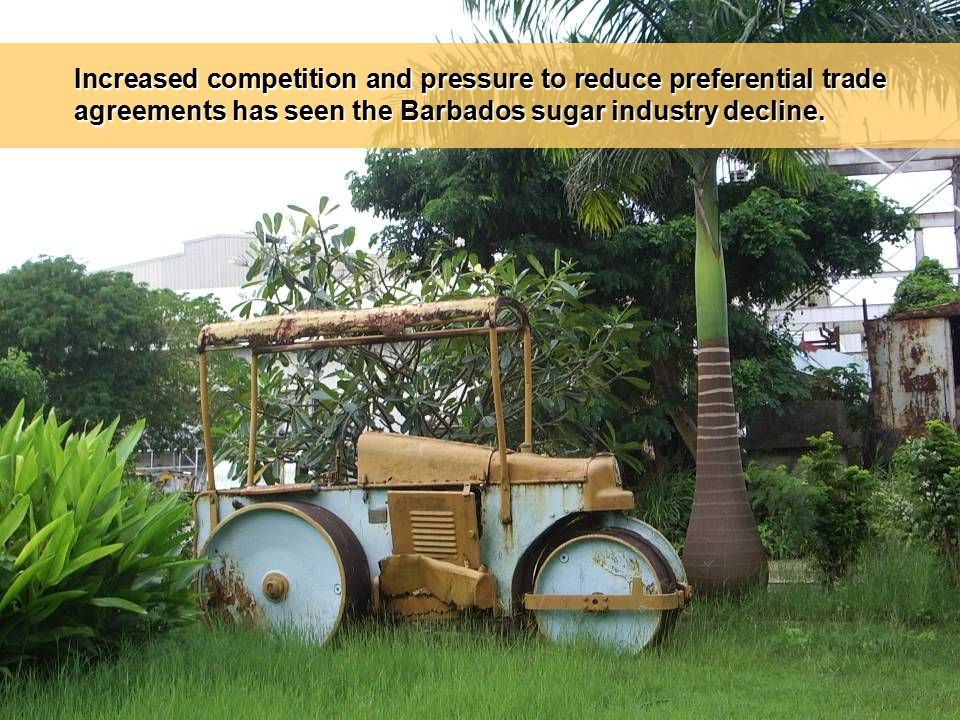 Increased competition and pressure to reduce preferential trade agreements has seen the Barbados sugar industry decline.