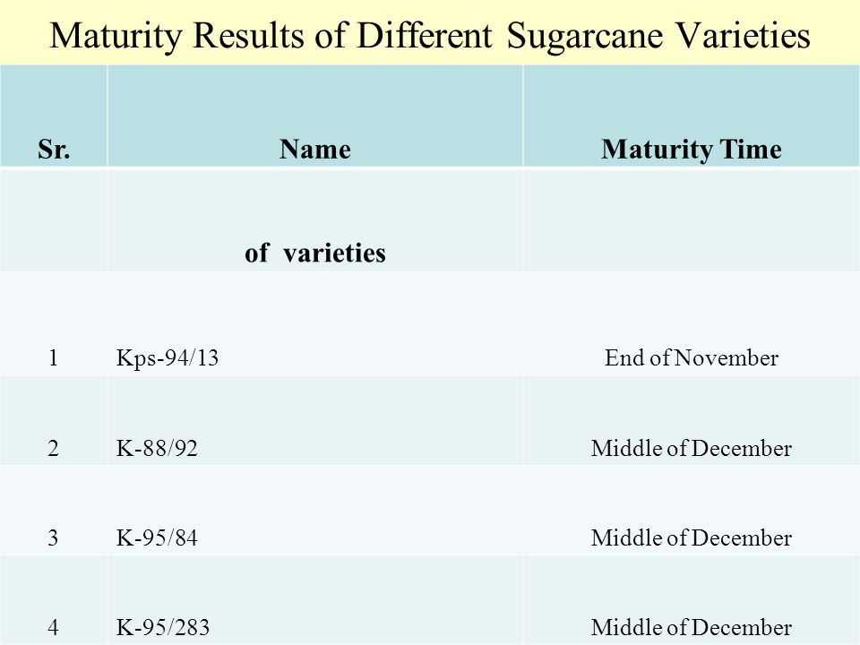 Maturity Results of Different Sugarcane Varieties Sr.NameMaturity Time of varieties 1Kps-94/13End of November 2K-88/92Middle of December 3K-95/84Middle of December 4K-95/283Middle of December