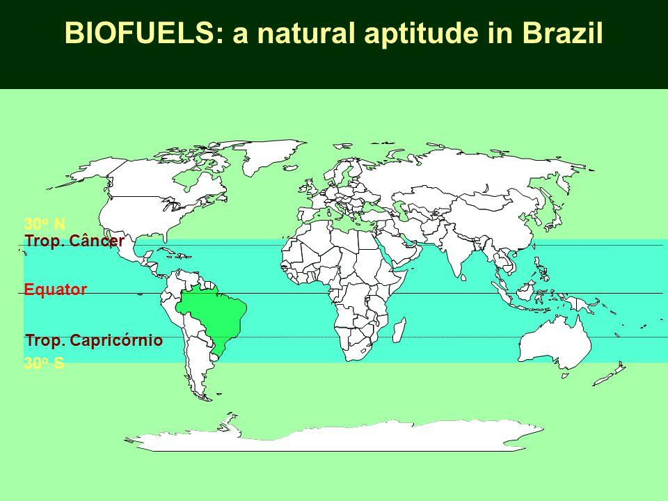 Equator Trop. Capricórnio 30 o S Trop. Câncer 30 o N BIOFUELS: a natural aptitude in Brazil