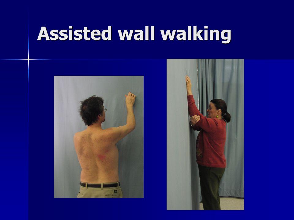 Assisted wall walking