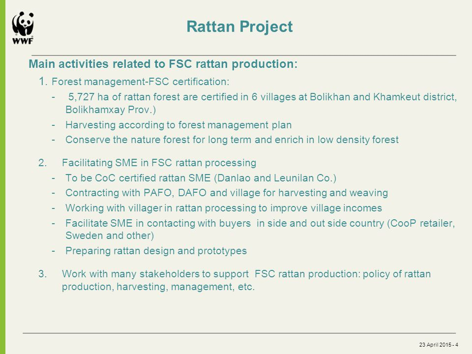 Rattan Project Main activities related to FSC rattan production: 1.