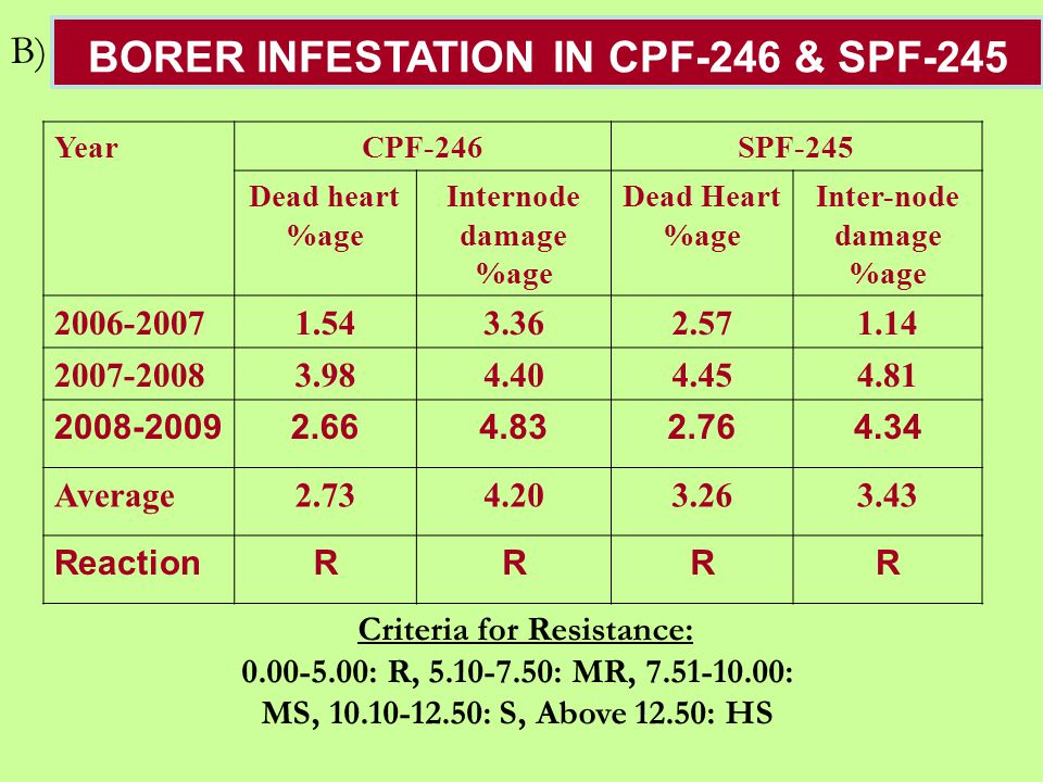 BORER INFESTATION IN CPF-246 & SPF-245 YearCPF-246SPF-245 Dead heart %age Internode damage %age Dead Heart %age Inter-node damage %age 2006-20071.543.362.571.14 2007-20083.984.404.454.81 2008-20092.664.832.764.34 Average2.734.203.263.43 ReactionRRRR Criteria for Resistance: 0.00-5.00: R, 5.10-7.50: MR, 7.51-10.00: MS, 10.10-12.50: S, Above 12.50: HS B)
