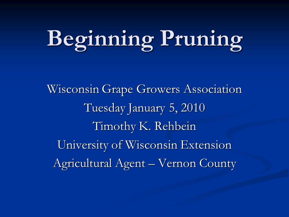 Beginning Pruning Wisconsin Grape Growers Association Tuesday January 5, 2010 Timothy K.