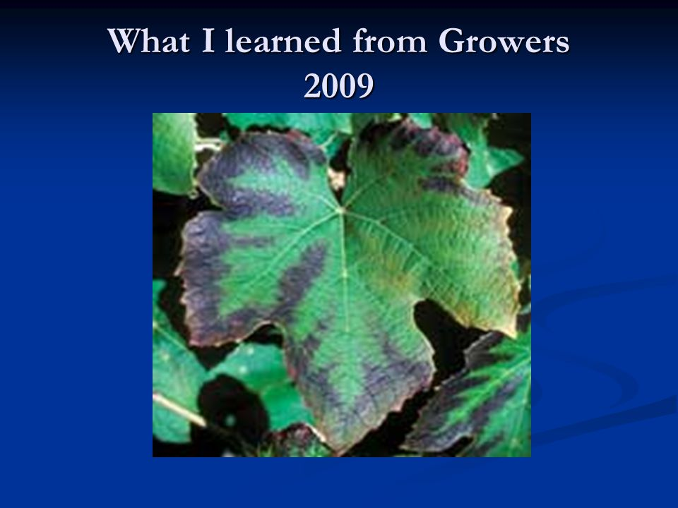 What I learned from Growers 2009