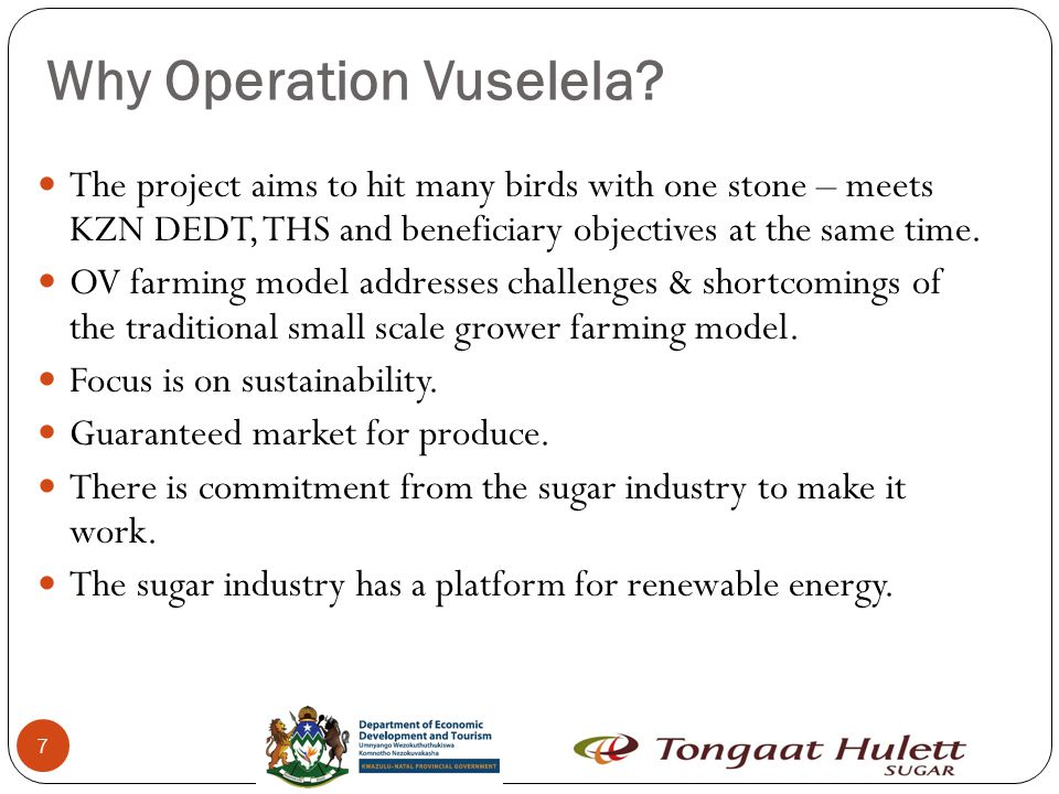 18 Operation Vuselela Farming Model Combined Farming Advantages Capitalise on economies of scale Greater bargaining power Can be managed more efficiently Allows for passive membership Based on business principles Disadvantages Possibility of internal conflicts It is compulsory for all beneficiaries and their committees to undergo training on principles of combined farming.
