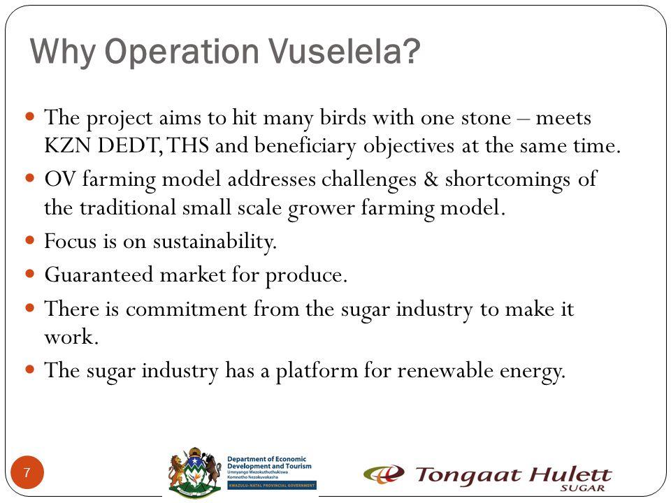 7 Why Operation Vuselela.