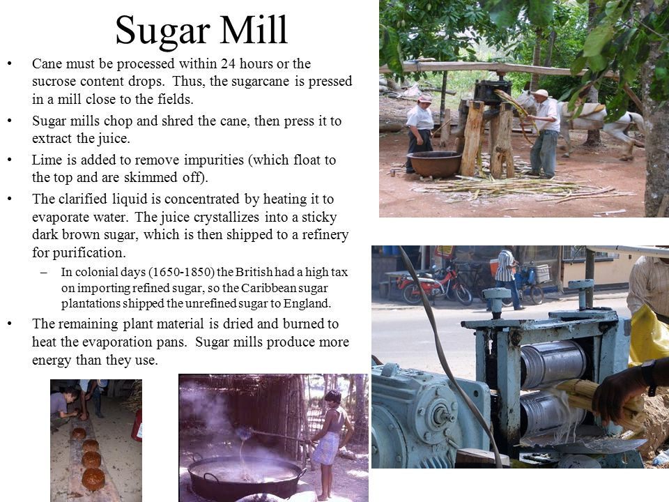 Sugar Mill Cane must be processed within 24 hours or the sucrose content drops. Thus, the sugarcane is pressed in a mill close to the fields. Sugar mi