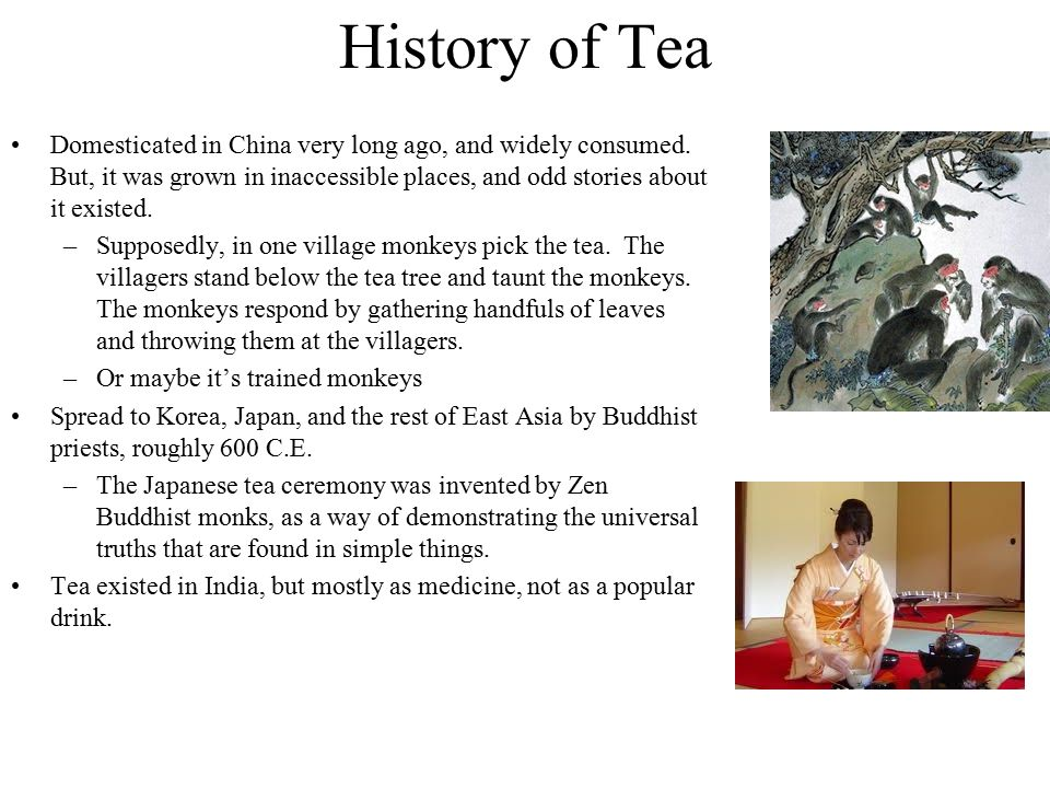 History of Tea Domesticated in China very long ago, and widely consumed. But, it was grown in inaccessible places, and odd stories about it existed. –