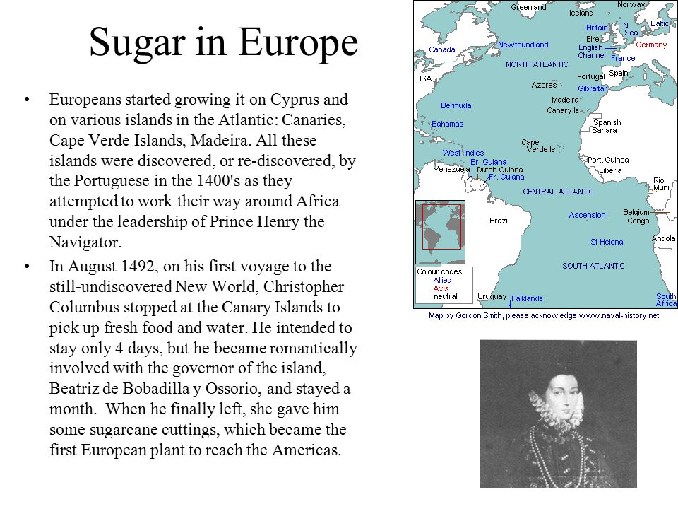 Sugar in Europe Europeans started growing it on Cyprus and on various islands in the Atlantic: Canaries, Cape Verde Islands, Madeira.
